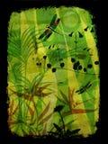Ilustración de la selva Imagen de archivo