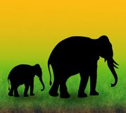 Ilustración de los elefantes Imágenes de archivo libres de regalías