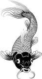 Ilustración de los pescados de la carpa del koi de Kohaku Foto de archivo libre de regalías