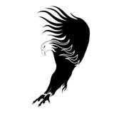 Ilustración de un vuelo del águila Imagenes de archivo