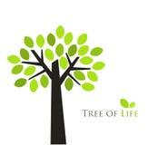 Ilustración del árbol stock de ilustración