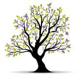 Ilustración del árbol del verano ilustración del vector