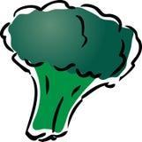 Ilustración del bróculi Imagen de archivo libre de regalías