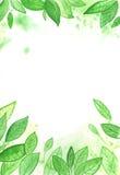 Ilustración del fondo de la acuarela Foto de archivo libre de regalías