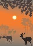 Ilustración del paisaje de la tarde del vector stock de ilustración