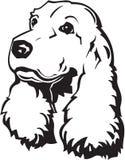 Ilustración del perro de aguas de cocker Foto de archivo