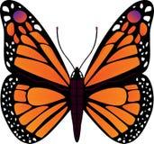 Ilustración del vector de la mariposa Imagenes de archivo