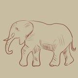 Ilustración del vector de un elefante Foto de archivo libre de regalías