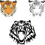 Ilustración del vector de una cara del tigre s Foto de archivo libre de regalías