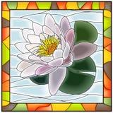 Ilustración del vector del lirio de agua blanca de la flor. libre illustration