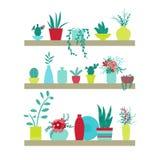 Ilustración del vector Estantes con las plantas y los floreros de flores Foto de archivo