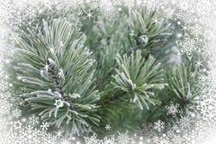 Ilustración escarchada de los copos de nieve, fondo de la Navidad imagenes de archivo