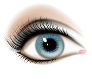 Ilustración femenina del ojo humano Fotografía de archivo libre de regalías
