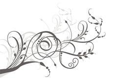 Ilustración floral de la vid Fotografía de archivo libre de regalías