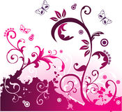 Ilustración floral del vector Fotos de archivo