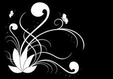 Ilustración floral del vector blanco en negro Fotos de archivo