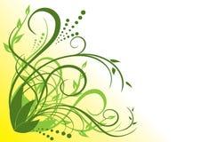 Ilustración floral verde y amarilla Foto de archivo libre de regalías