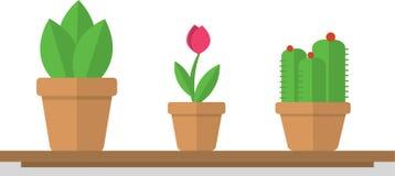 Ilustración Potted de la planta stock de ilustración