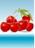 Ilustración roja de la cereza Imágenes de archivo libres de regalías