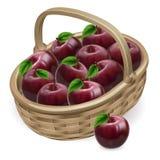 Ilustración roja de la cesta de la manzana stock de ilustración