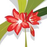 Ilustración roja del vector del lirio de la flor Foto de archivo