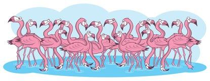 Ilustración rosada de la historieta de los flamencos ilustración del vector