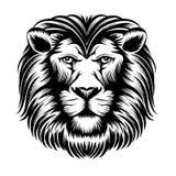 Ilustración salvaje del león ilustración del vector