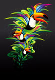 Ilustración toucan del vector Fotografía de archivo