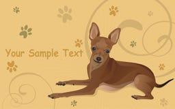 Ilustración un perro y rastros de las patas Foto de archivo libre de regalías