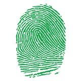 Ilustración verde de la huella digital Imagen de archivo libre de regalías