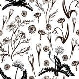 Ilustraci?n del vector Sistema de la primavera dibujado en l?nea negra Las primeras flores del resorte Imagen para su decoraci?n  ilustración del vector