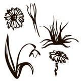 Ilustraci?n del vector Sistema de la primavera dibujado en l?nea negra Snowdrops, pájaros, primavera de la inscripción deletreado stock de ilustración