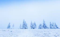 ilustraci śniegu stylizowana drzewna zima Obrazy Stock