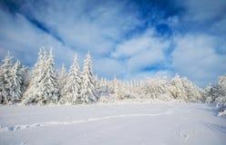 ilustraci śniegu stylizowana drzewna zima Obraz Royalty Free