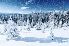 ilustraci śniegu stylizowana drzewna zima Karpacki, Ukraina, Europa Bokeh lekki ef Obraz Royalty Free