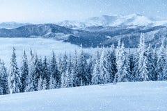 ilustraci śniegu stylizowana drzewna zima Karpacki, Ukraina, Europa Bokeh lekki ef Obrazy Stock