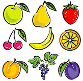Ilustración del vector de las frutas Imágenes de archivo libres de regalías