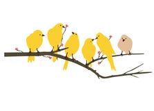 Ilustraciones amarillas de la etiqueta del pájaro stock de ilustración