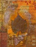 Ilustraciones del diem de Carpe Fotografía de archivo libre de regalías