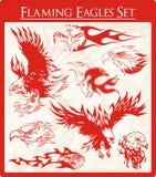 Ilustraciones llameantes del vector del águila fijadas Foto de archivo