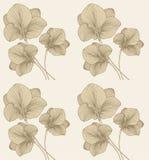 Ilustraciones manuales Digital del vintage del ejemplo y de la planta de la flor de Mughal aumentada ilustración del vector