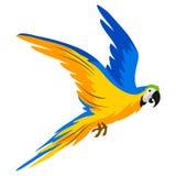 Ilustracja ary papuga Tropikalny egzotyczny ptak na białym tle royalty ilustracja