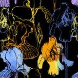 Ilustracja bezszwowy wzór z akwarela irysami Lato kwiat na czarnym tle Kwiecisty opakunkowy papier Zdjęcie Royalty Free