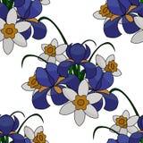 Ilustracja, bukiet kwiaty błękitni irysy i daffodils, biali i żółci, z zielonymi gałąź, bezszwowy wzór ilustracja wektor