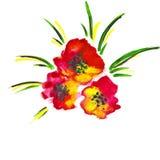 Ilustracja czerwoni kwiaty Zdjęcie Royalty Free