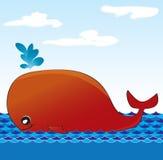 Czerwony wieloryb Obrazy Stock