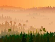 Ilustracja dolina z iglastym drewnem. Ilustracji