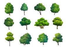 Ilustracja drzewa odizolowywający na białym tle Fotografia Royalty Free