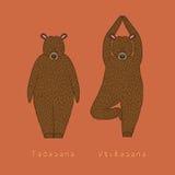 Ilustracja dwa joga niedźwiedzia ilustracji