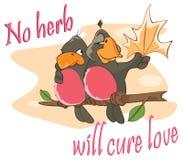 Ilustracja Dwa miłość ptaki, porzekadło pocztówka Obrazy Stock